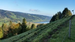 Jugendfahrt zum Alpsee-Coaster 2014: